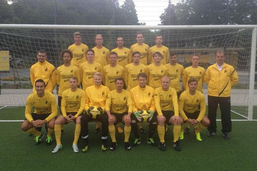 Erste Mannschaft - Saison 2013/14 (Foto: uwei).