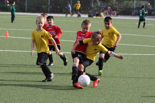 TuS F2-Jugend im Samstagspiel gegen Sportfreunde Katernberg 2 (Foto: p.d.).