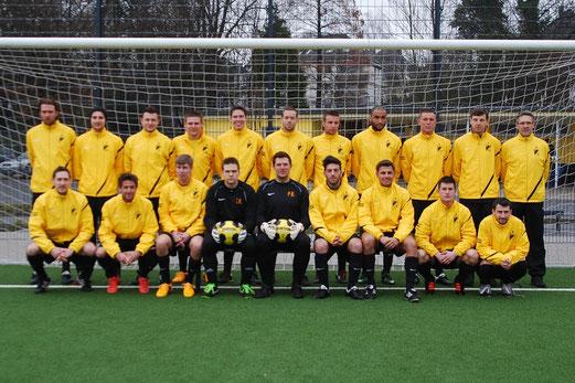 1. Mannschaft - Rückrunde 2012/13 (Foto: Nern).