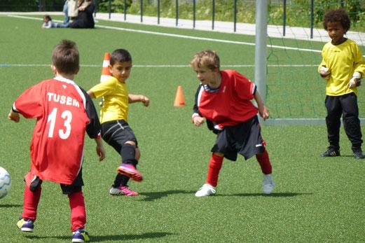 Hauptdarsteller I: TuS Bambini 2 im Spiel gegen den TuSEM (Foto: mal).