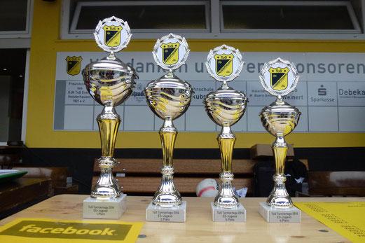 Pokale - gestiftet von MdB Petra Hinz und dem SPD-Ortsverband. - (Foto: mal).