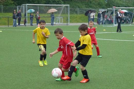 Endspiel: TuS F2-Jugend gegen TuSEM F2 (3:1). - (Foto: mal).
