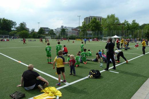 E2-/E3-Jugend Turnier - Foto (oben): mal, unten: TuS E2-Trainer - Foto: r.f., TuS E2 guckt - Foto: mal.