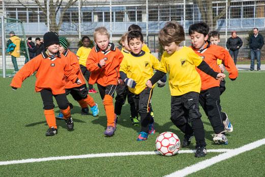 TuS Bambini 2 im Spiel gegen Ballfreunde Bergeborbeck. (Foto: r.f.).