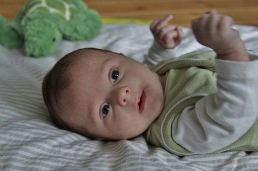 8 semaines : naissance d´une passion pour les décorations murales, et premiers émois sur le tapis d´éveil