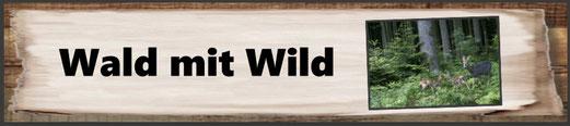 Wald mit Wild