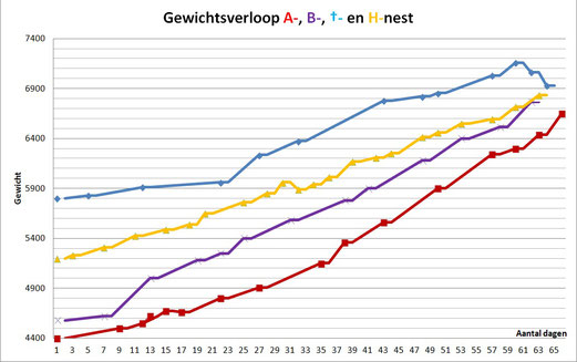 Geel: H-nest | Blauw:  doodgeboren nest | Paars: B-nest | Rood: A-nest