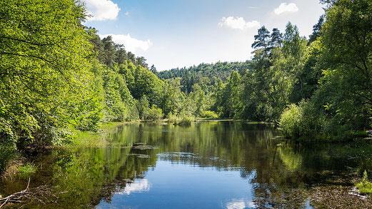 Das Naturdenkmal Ungeuersee, idyllisch gelegen in einem Hochmoorbecken.