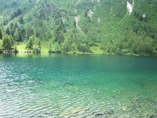 Foto : Gabriela Erber ...Scheiblsee in 1725m Höhe