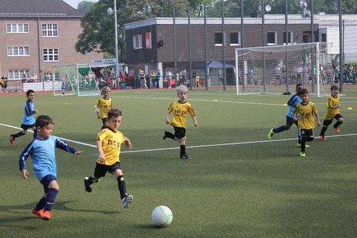 TuS Bambini 2 beim Turnier des TuSEM am Fibelweg. - Foto: towi.