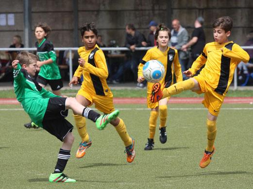 TuS D2-Jugend beim D-Jugend Turnier des VfL Grafenwald in Bottrop. - Fotos: p.d.