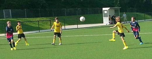 Vier Punkte aus zwei Spielen: TuS E2-Jugend beim 7:4 Heimerfolg gegen BV Altenessen 2. - Foto: m.d.