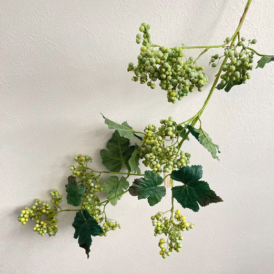 Sakuranoha branch,桜の葉ブランチ,BOBCRAFT