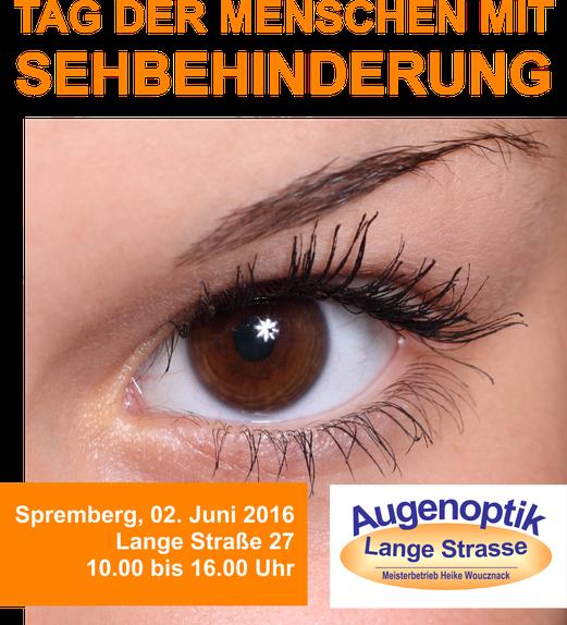 Aktionstag: Tag der Menschen mit Sehbehinderung 2016 in Spremberg