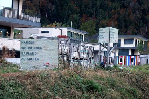 24. Oktober 2019 - Wald in Bedrängnis