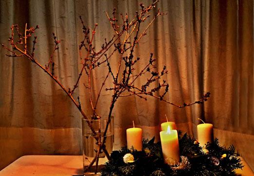04. Dezember 2018 - Sankt Barbara. Wer heute Zweige vom Strauch schneidet und diese in die warme Stube bringt, der erlebt am Weihnachtstag ein Blütenwunder. Dieser uralte Brauch soll Glück und Segen bringen.