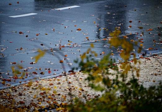 26. Oktober 2020 - Nicht der bunte, der eher traurige Herbst