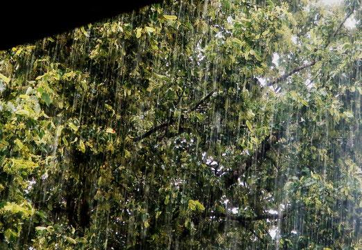 20. Juni 2020 - Es regnet - nein, es schüttet