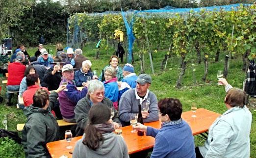 Bei der Weinernte in Maienfeld, Chardonnay im Glas