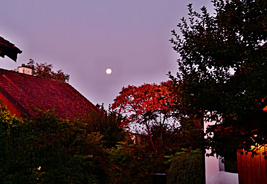 15. September 2019 - Schichtwechsel. Der Mond wird von der Sonne verdrängt.