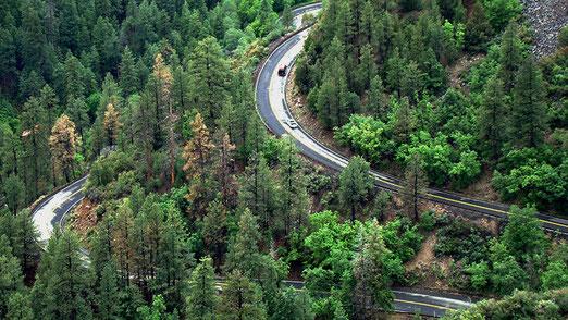 Die kurvenreiche Strasse führt durch den Oak Creek Canyon