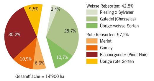 Statistik zur Rebfläche der Schweiz. In den 9.5% (oben, ocker) vebergen sich etwa 200 Rebsorten, darunter auch der Blaufränkisch