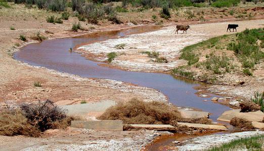 Wir streifen den Llano Estacado. (Die Gegend wurde von Karl May des öftern beschrieben in seinen Werken)