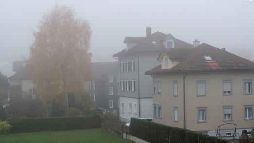 """Replik von Hans Weiss: Auch ich bin nicht besser dran, wenn ich morgens aus dem Fenster schaue."""""""