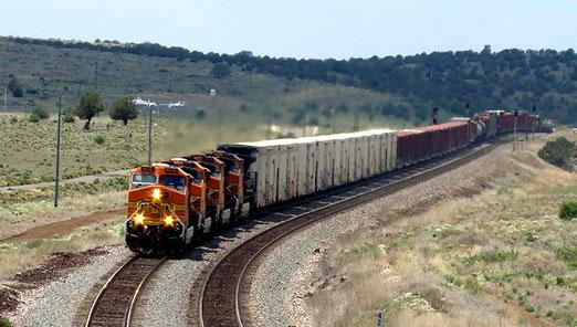Häufig ziehen kilometerlange Güterzüge an uns vorbei.