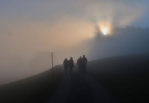 06. Januar 2020 - Noch liegt das neue Jahr im Nebel
