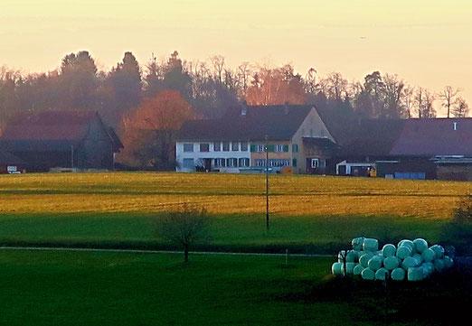 17. Februar 2020 - Bauernhof-Romantik