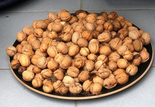 27. November 2018 - Jemandem nicht nur eine, viele Nüsse zu knacken geben