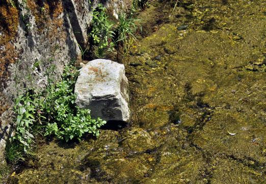04. August 2020 - ....der werfe den ersten Stein.