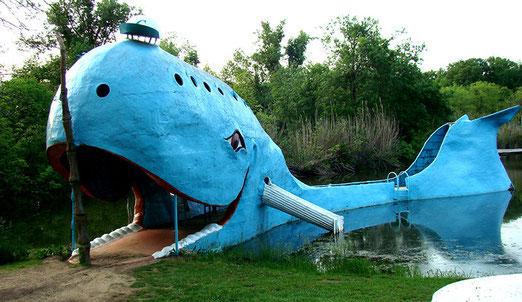 """In der Nähe von Catoosa frönt an einem Weiher """"Moby Dick"""" das Dasein."""