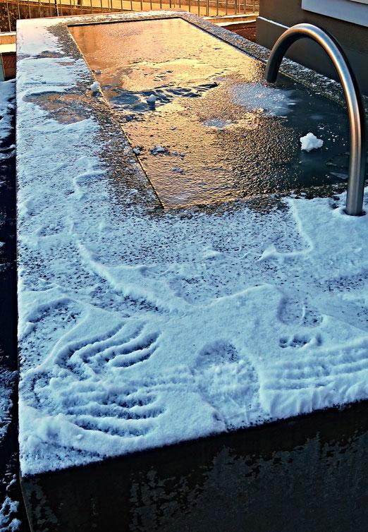 19. Februar 2018 - Eis- und Schnee-Spuren
