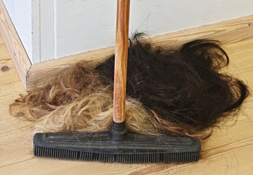 09. Februar 2018 - Wer musste da Haare lassen?