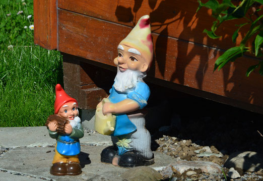 03. August 2020 - Sie stammen ursprünglich aus Anatolien. Dort traten sie schon im 13. Jahrhundert auf, im 16. Jahrhundert dann in Italien. Etwas später waren sie dann in Deutschland und auch in der Schweiz präsent.