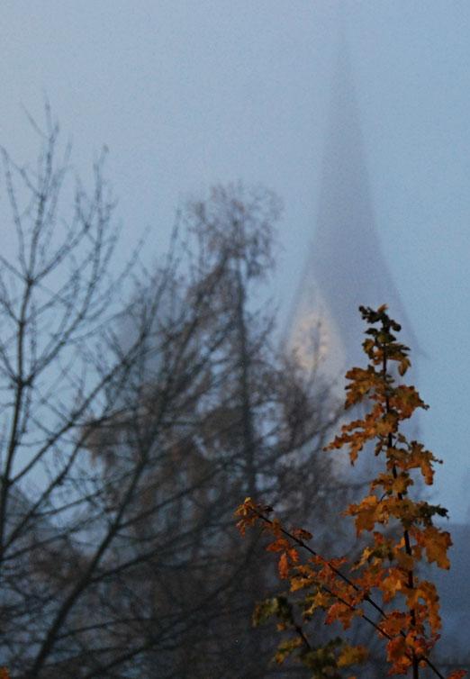 04. November 2020 - Seltsam, im Nebel zu wandern. Einsam ist jeder Busch und Stein, kein Baum sieht den andern. Jeder ist allein. (Hermann Hesse)