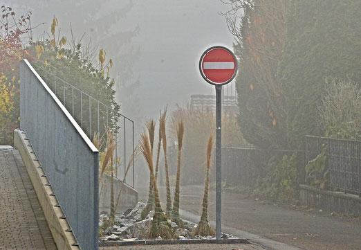 02. Januar 2021 -Wetterprognose: Die graue Wolkendecke bleibt uns den ganzen Tag erhalten