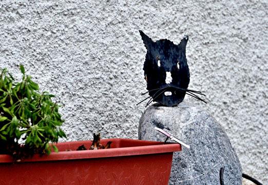 14. Januar 2019 - Wachthunde bellen und beissen. Was aber macht die Wachtkatze?