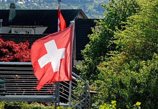 09. Mai 2021 - Die Schweiz im Kampf mit der Natur. Wer ist stärker?