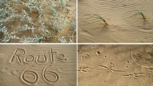 Kelso Dunes - Eindrücke