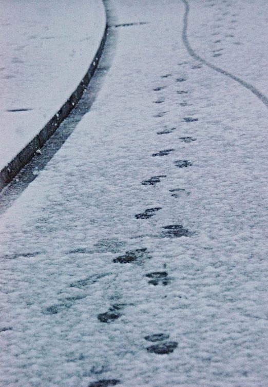 05. Dezember 2020 - Spuren im Schnee. Hatte Vico Torriani recht?  Führen sie auch ins Glück hinein?