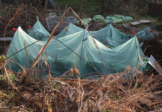 16. März 2018 - Wann erwacht der Garten aus dem Winterschlaf?