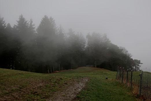 04. Januar 20120 Nebelschwaden ziehen vorbei