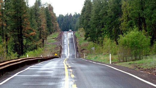 Am 18. Tag verlassen wir die Route 66 Richtung Süden und begeben uns auf einen Tagesausflug nach SEDONA