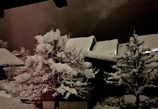 16. Januar 2021 - Stille Nacht. Ein Dorf in Watte verpackt.