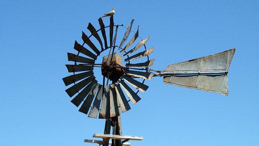 Die Windräder sind überall anzutreffen im Mittleren Westen; allerdings nur selten mit einem Vogel auf der Spitze.