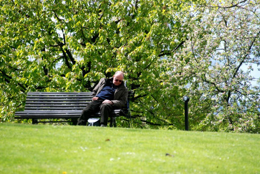 25. April 2012 - Frühlingsmüde