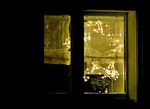 02. Januar 2019 - Der Weihnachtsstern, der in die Stube kam